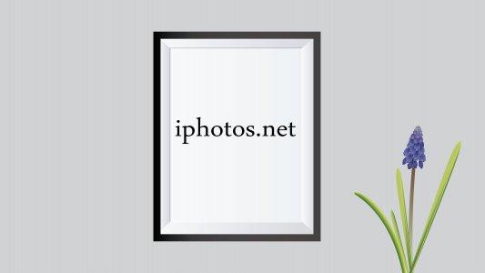 iphotos.net